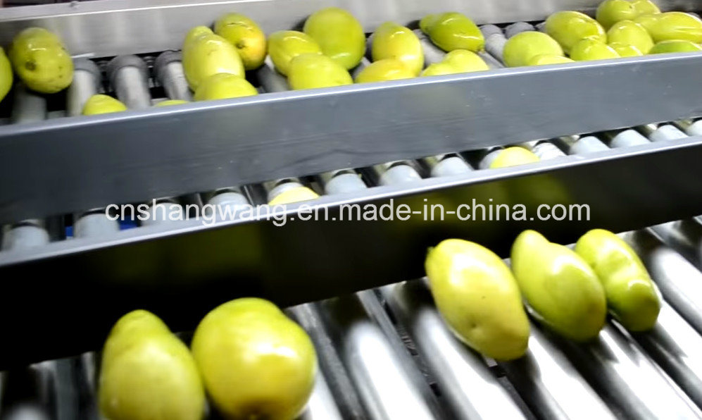 High Quality Juice Production Line