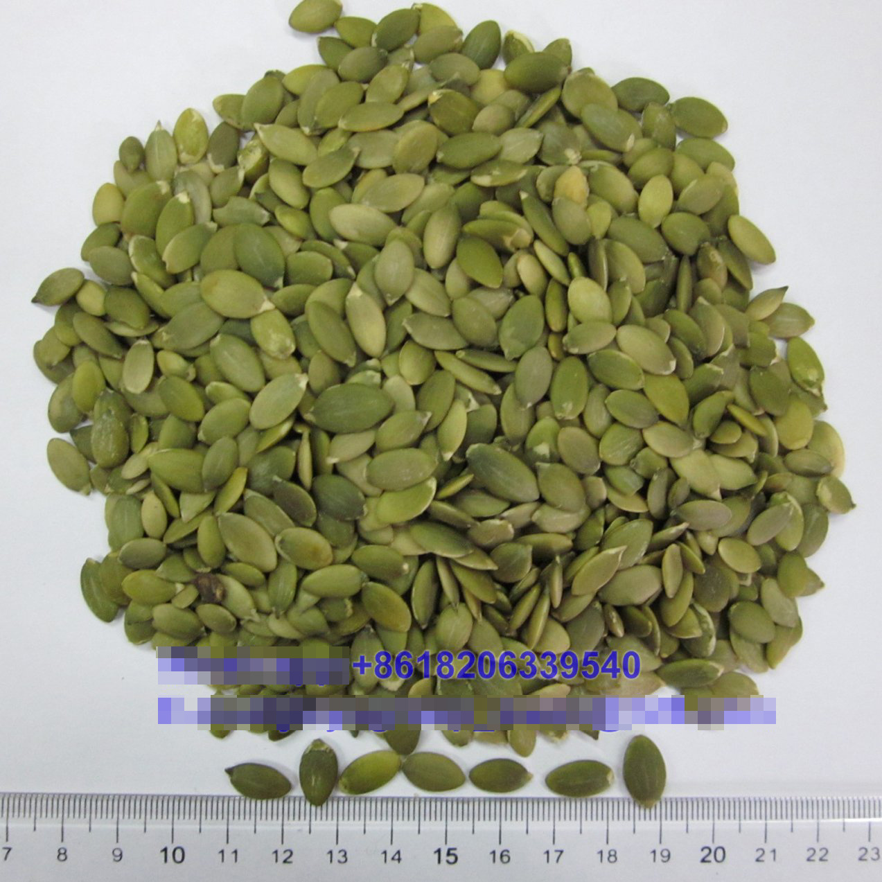 Raw Seeds Snow White Pumpkin Seeds
