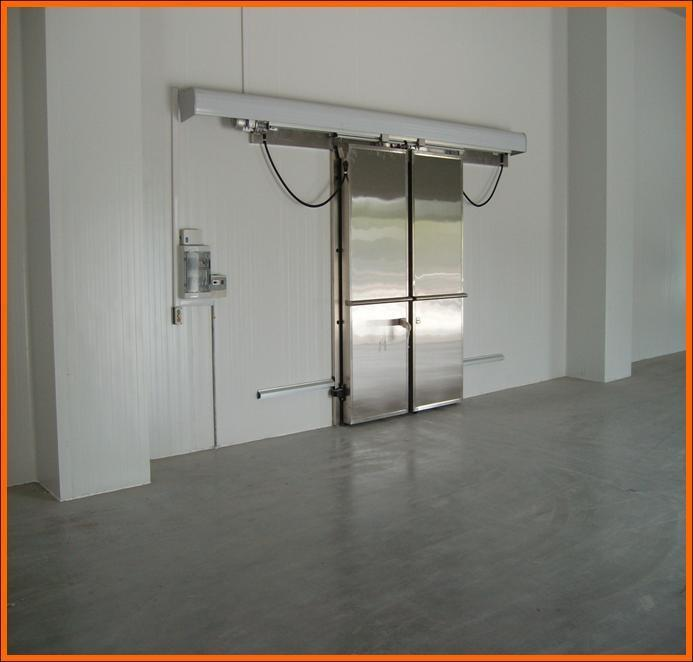 Professional Cold Room/Freezer with PU Sandwich Panel