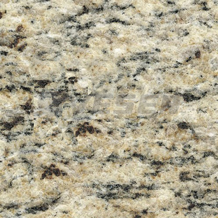 China Giallo Santa Cecilia Granite China Brown Granite Granite Vanity