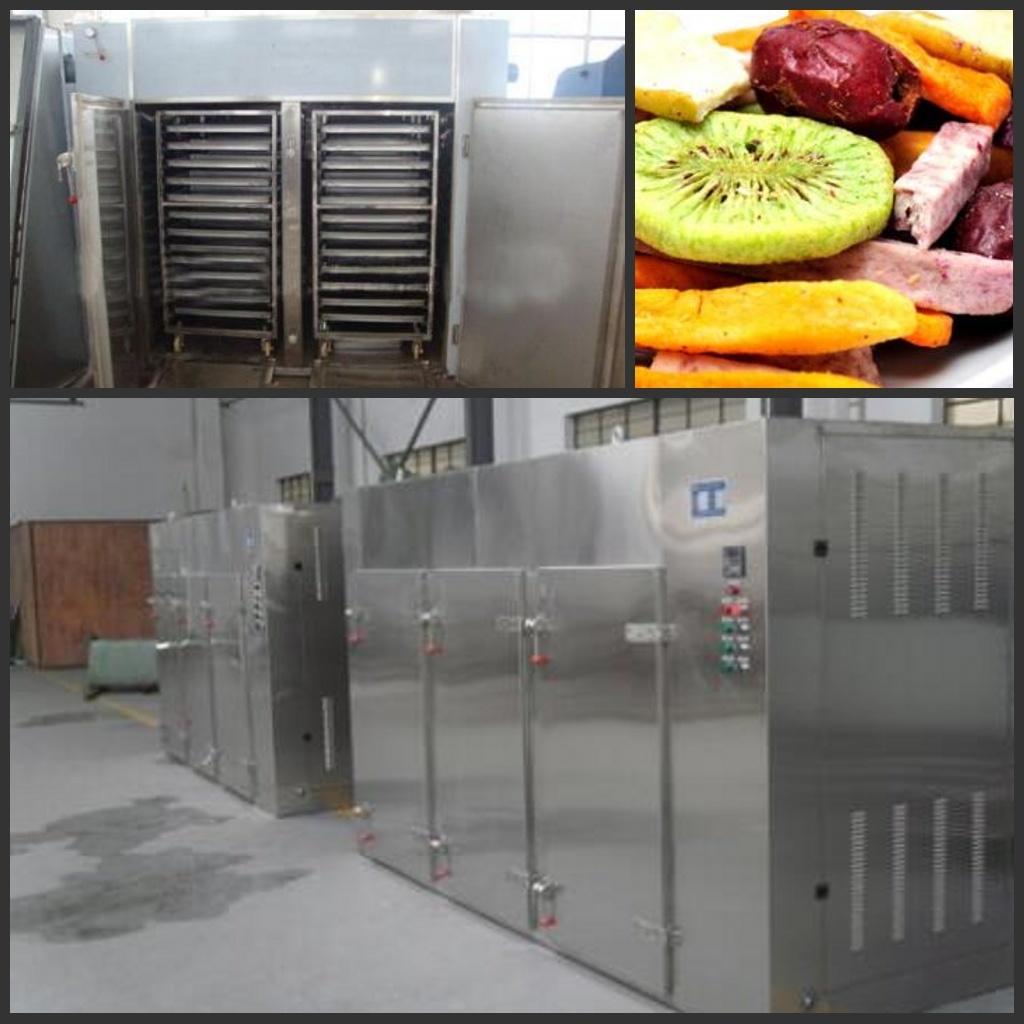 Factory Price Fresh Fruit Drying Machine