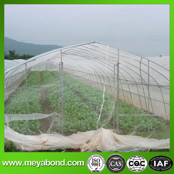 Max 5.5m Width Anti Insect Net (WHITE FLY) Net 50mesh