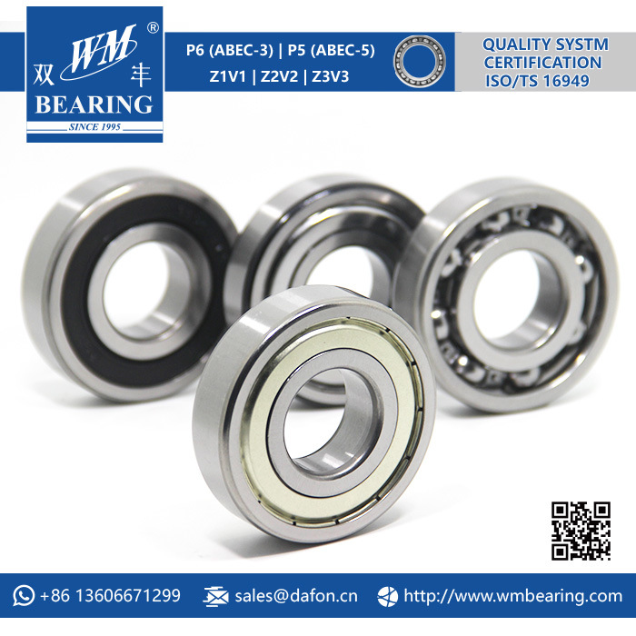 Auto Motorcycle Parts Electric Motor Bearing (6305 Zz/2RS)