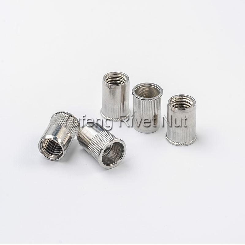 Stainless Steel Rivet Nut Countersunk Head/Small Head/Flat Head/Hexagon Head