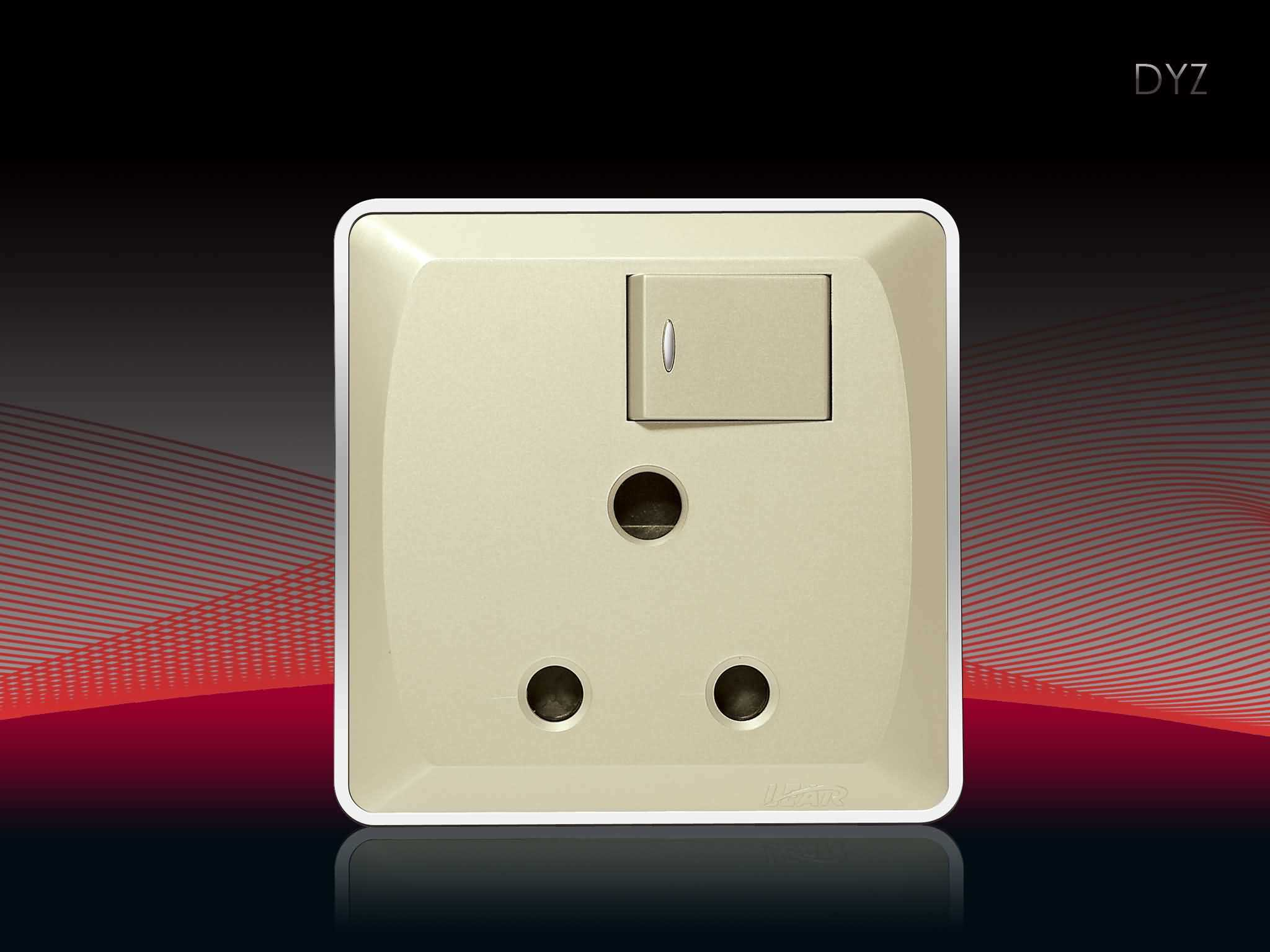 Bs Switch and Socket (V6-3D, DYZ-15)