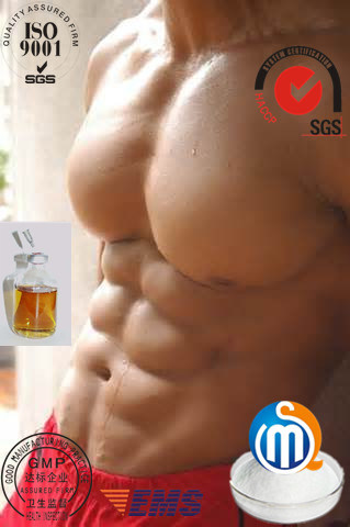 Anadrol Oxymetholone (health care)