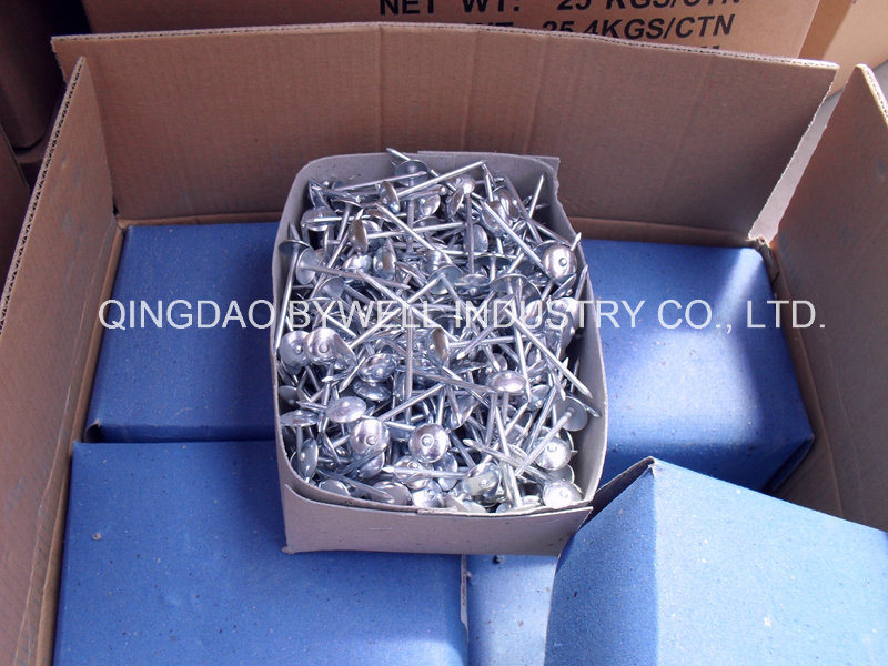 Zinc Umbrella Roofing Nails with Best Quality and Good Price (8G-13G)