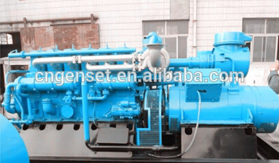 Biomass Syngas Gasification Power Plant/Biomass Syngas Gasification Power Generation