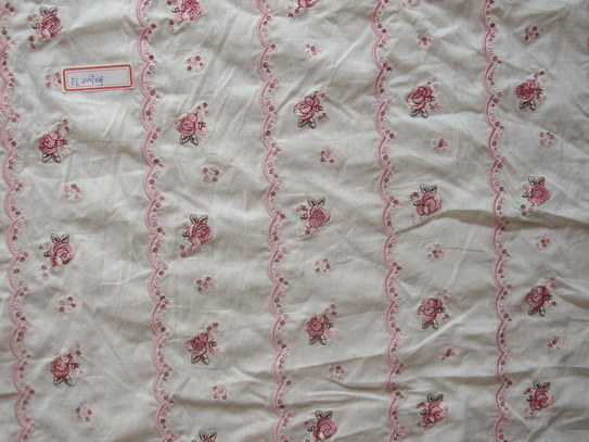 China eyelet and embroidery fabric