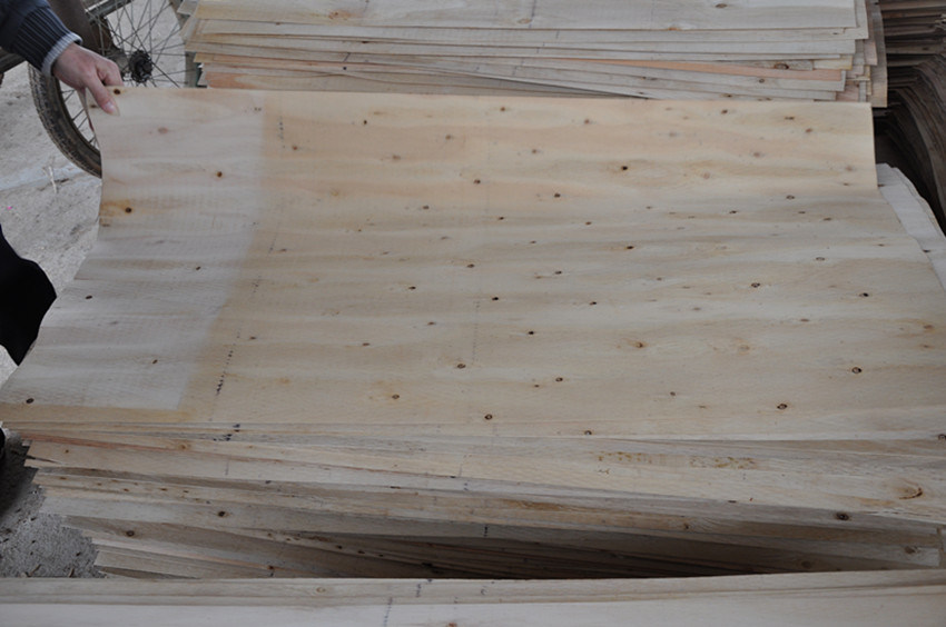 Veneer/Poplar/Pine/Okoume/Eucalyptus/Birch/Bintangor Sheet for Plywood Veneer