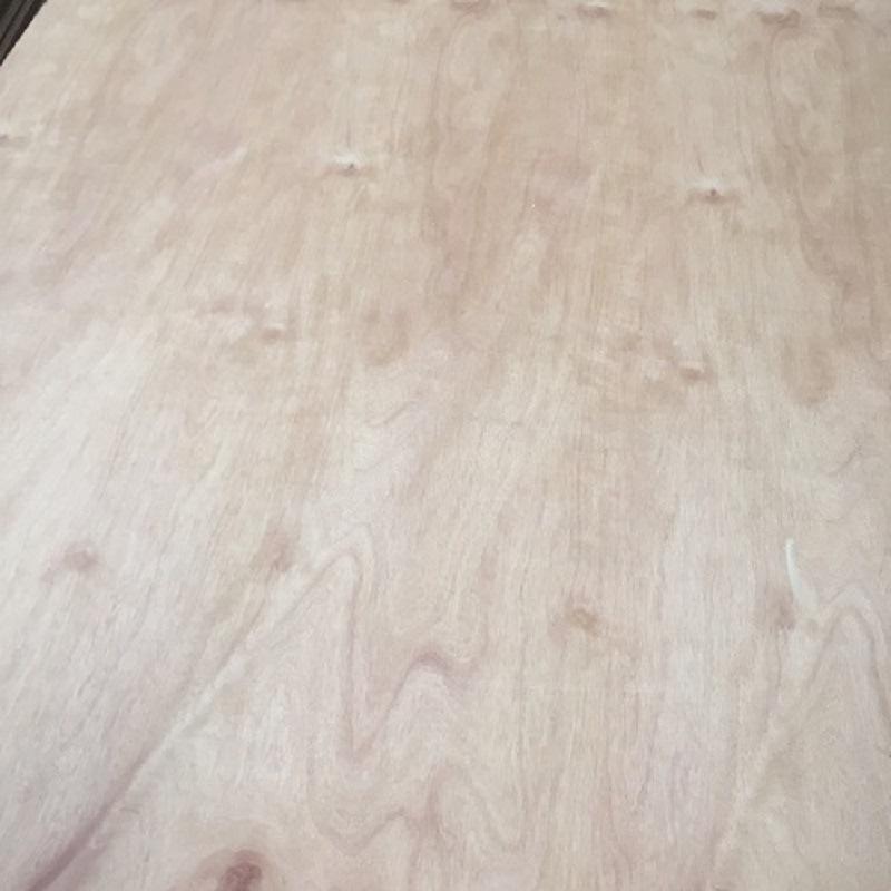 BB/CC Grade 18mm E1 Glue Red Pencil Cedar Plywood