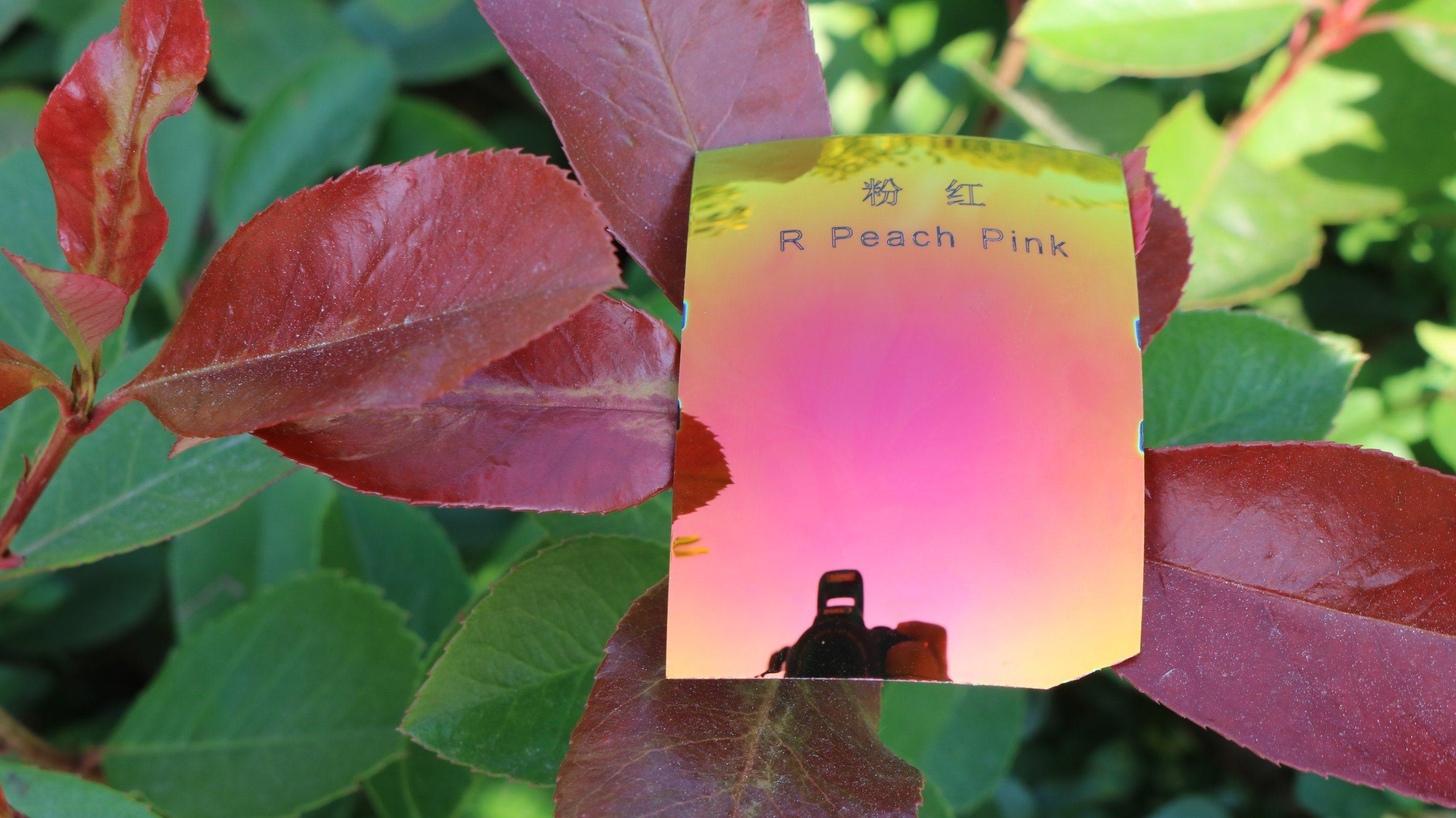Colorful Sunglasses Polarized Tac Lens Repalcement Lens (R Peach Pink)