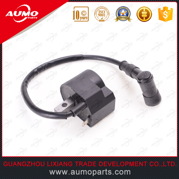 Motorcycle Ignition Coil for D1e41qmb Scooter Parts