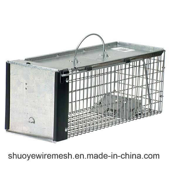 Collapsible Animal Trap and Cage