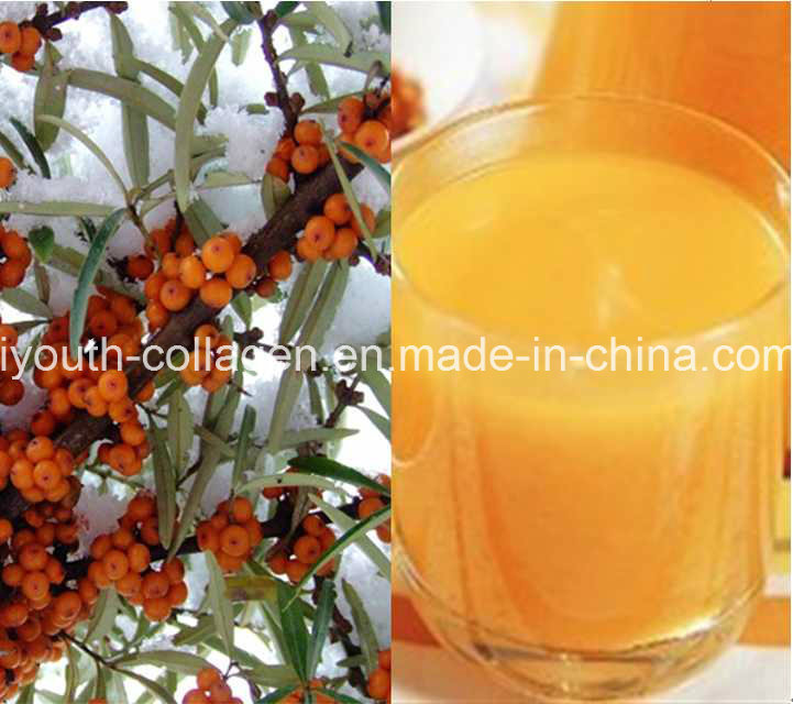 EU Quality, GMP 100%Natural Organic Wild Seabuckthorn Fruit Juice, King of Vc, SOD, Anticancer, Radiation Resistance, Anti-Aging, Prolong Life