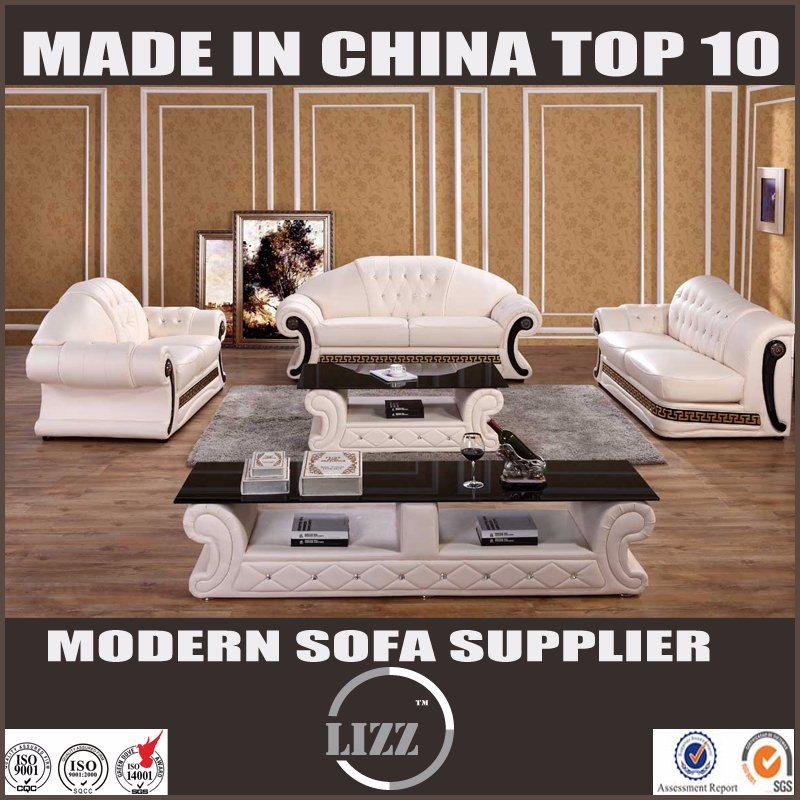 Divany with Table Living Room Genuine Leather Sofa