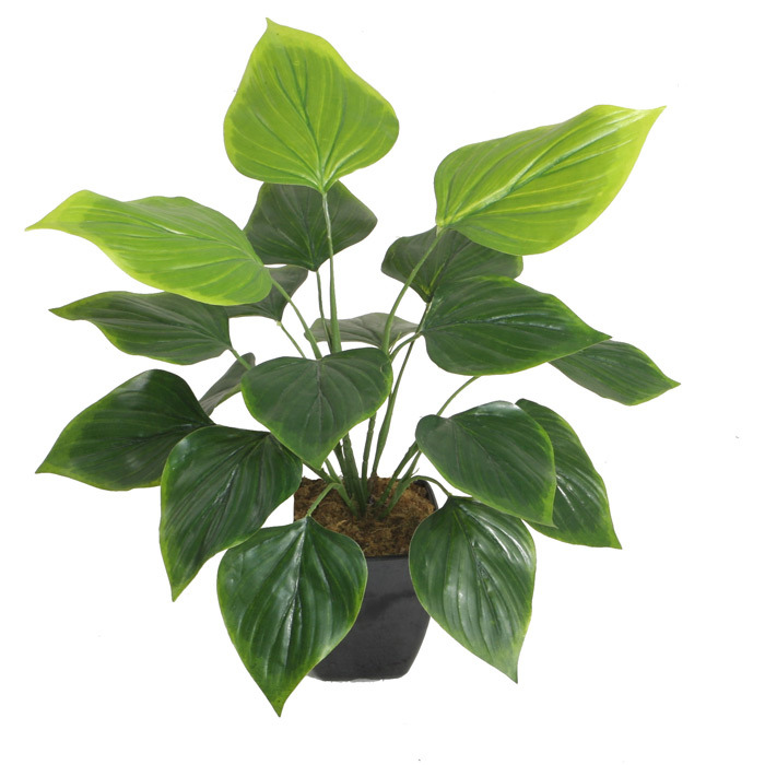 "Artificial Green Plants 50cm Philodendron with 4.5""Plastic Pot, 18 Lvs"