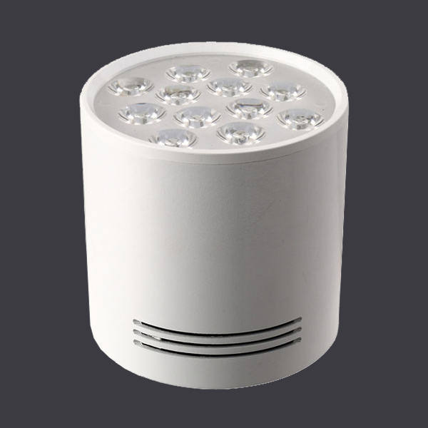 12W COB LED Downlight with Ce UL SAA White
