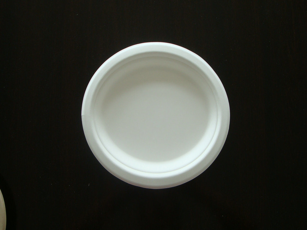 Eco Friendly Disposable Sugarcane Pulp Paper Plate