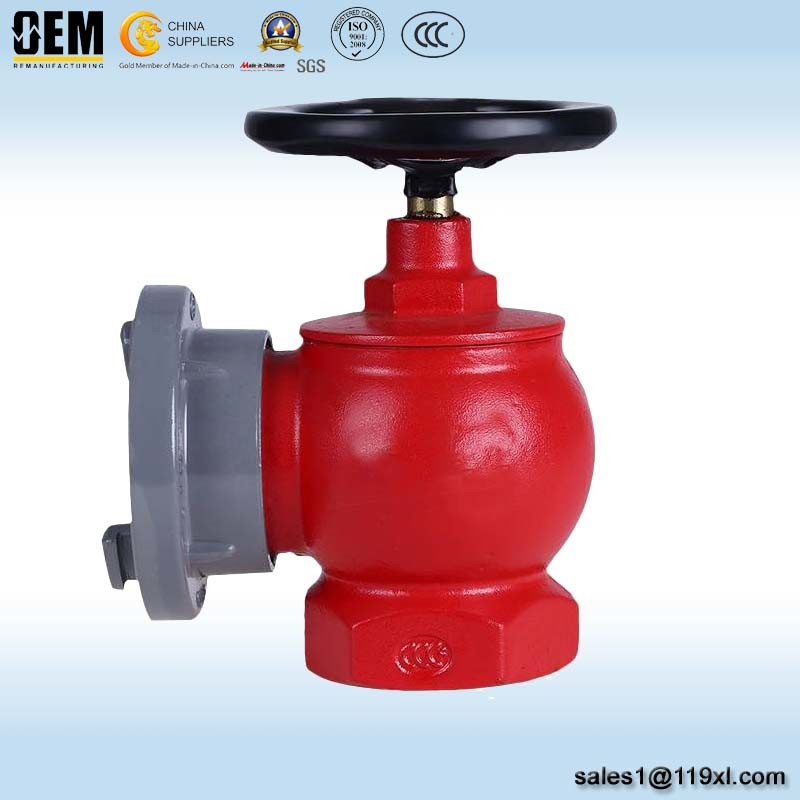 Sn65 Indoor Fire Hydrant for Fire Fighting System