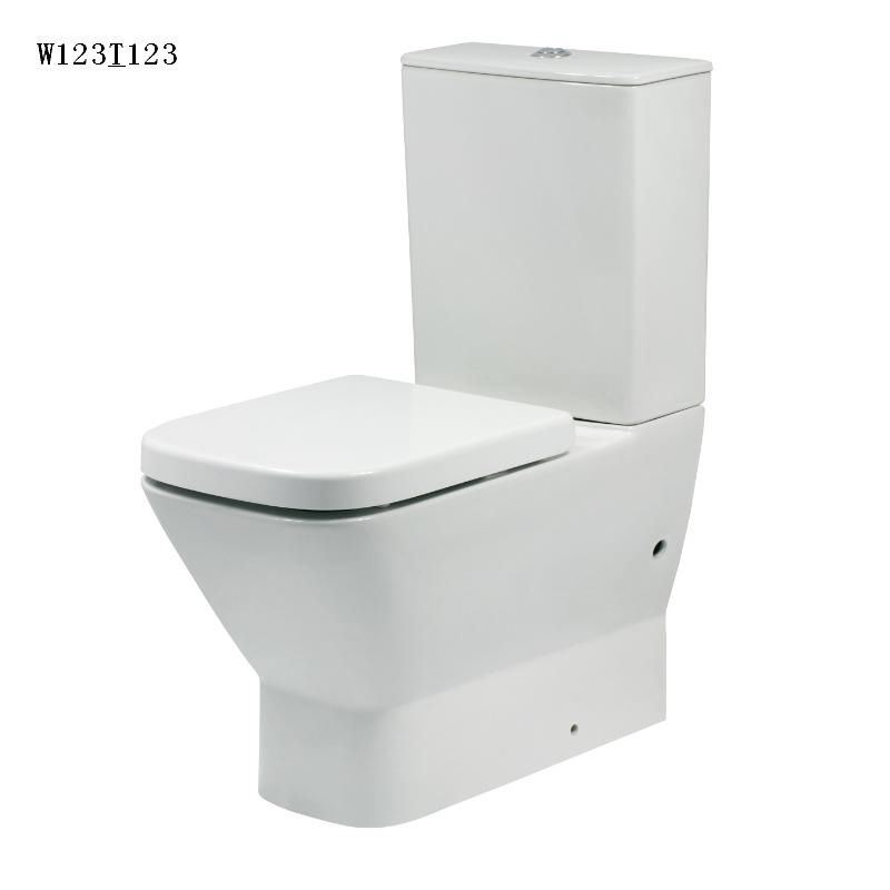 Watermark Approve Europea Standard Hot Sale Square Two Piece Wc Ceramic Toilet (W101&T101)