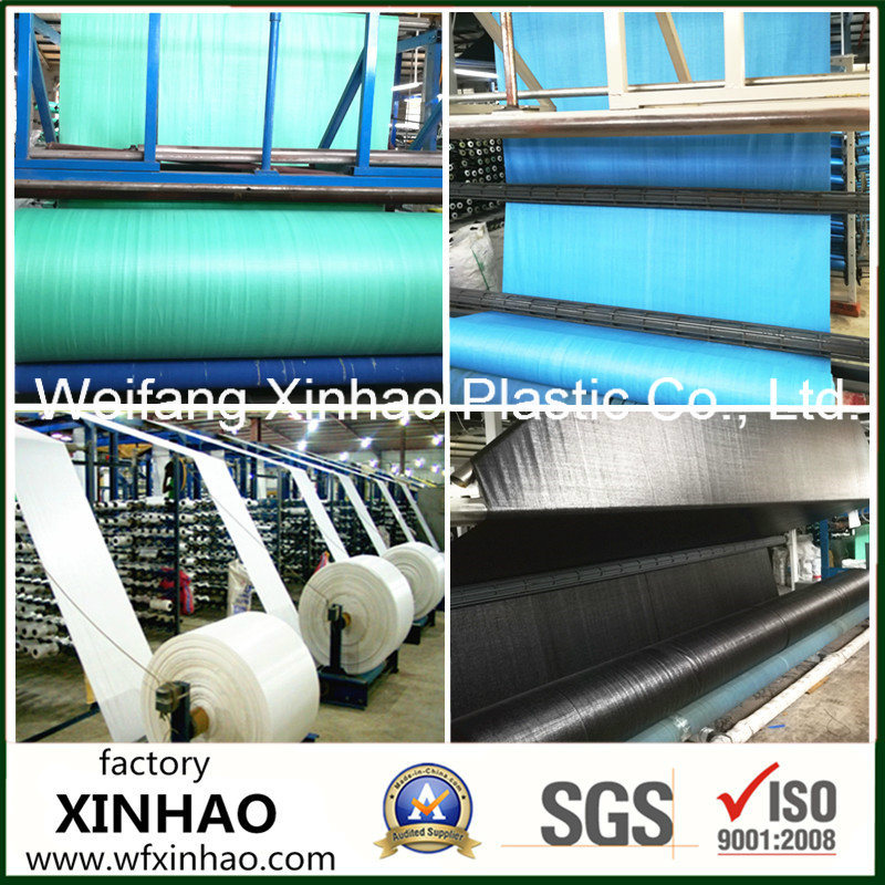 High Quality PP Woven Fabric Roll with Cheap Price From Factory