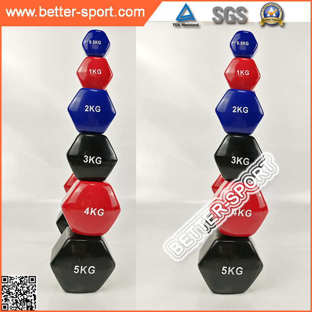 High Quality Colorful Vinyl Dumbbell