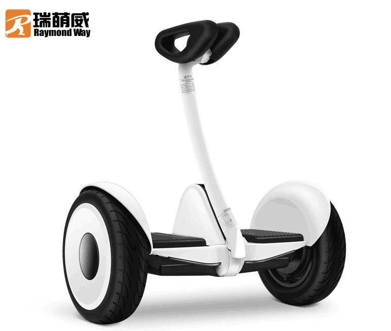 Two Wheel Self Balancing Electric Mobility Scooter
