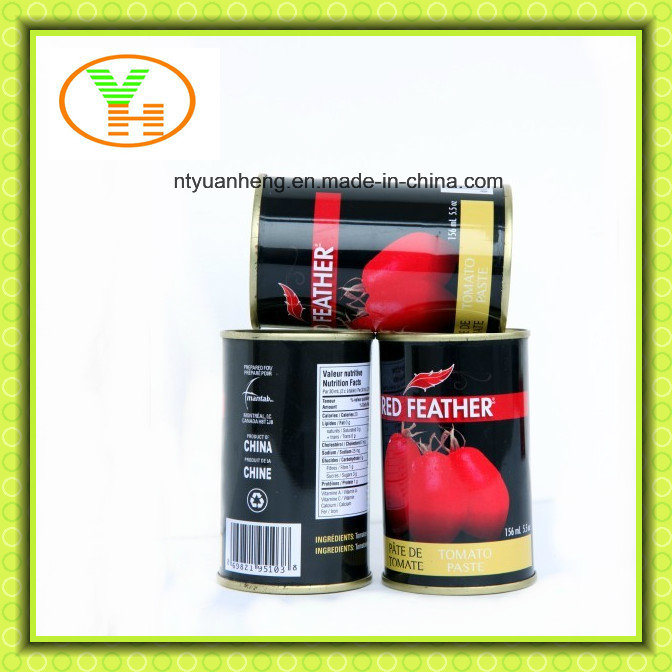 Tomato Paste 28 30 and Double Concentrated Tomato Puree