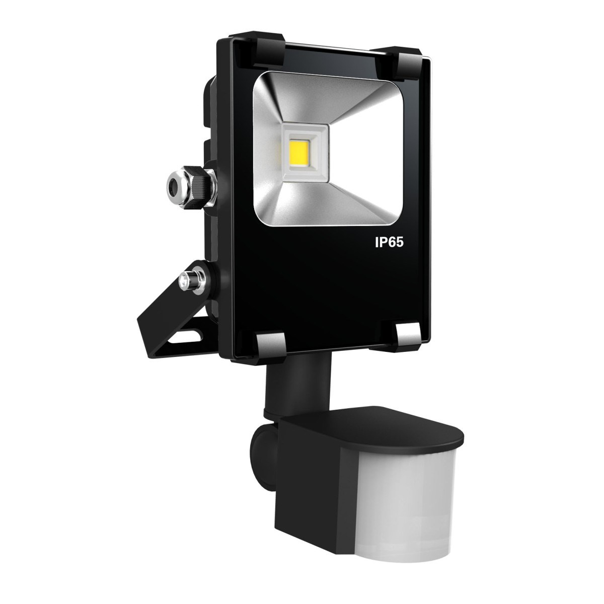 IP65 Black 30W LED Floodlight with Philip Chip