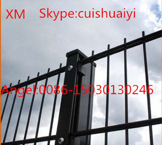 Professional Custom Easily Assembly Double Wire Mesh Fence/Double Bar Fence