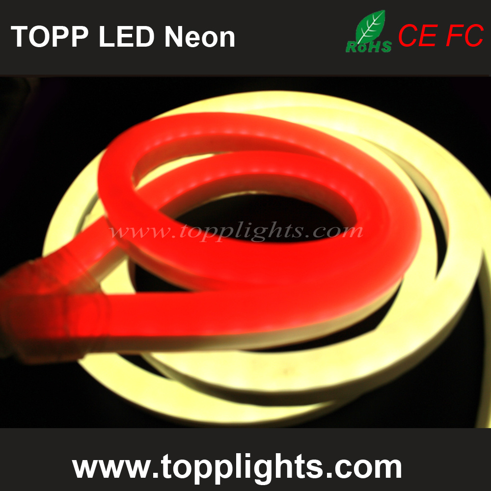 Underwater IP67 Rating  LED  Neon  Flex Professional