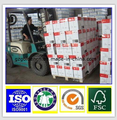 70/75/80GSM Copy Paper, Copier Paper 80GSM, A4/A3/Letter Size/Legal Size