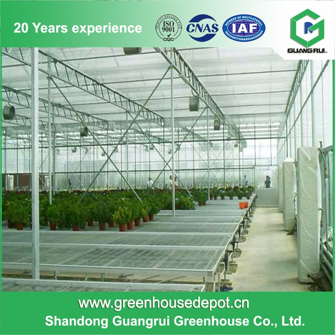 Best Price Polycarbonate (PC) Sheet Greenhouse for Sale