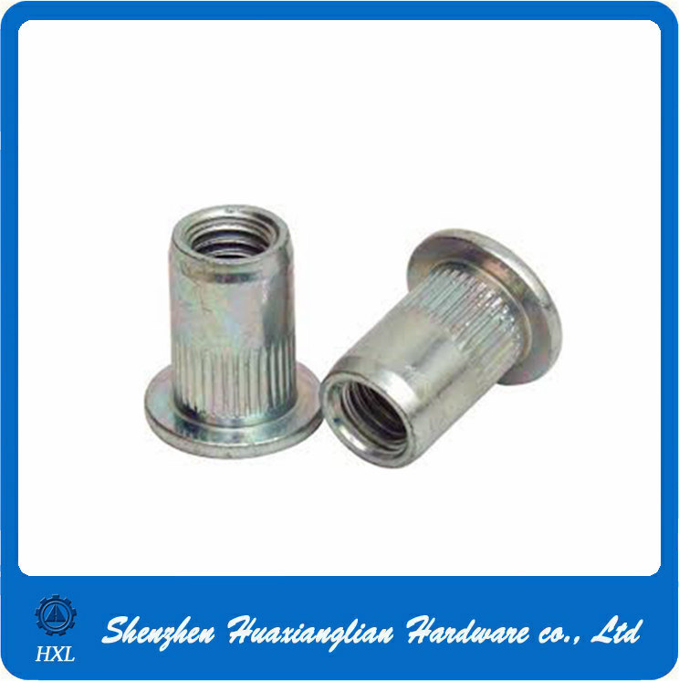 Customized Different Types Flat Head Thread Insert Steel Rivet Nuts
