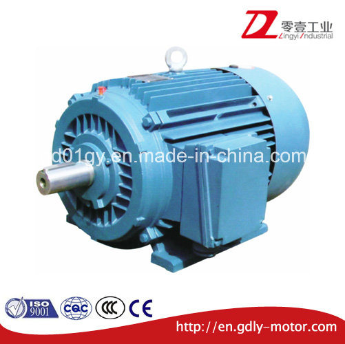 Cast Iron Three-Phase Asynchronous Induction Electric Motor