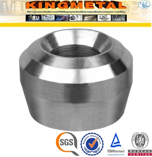 Ss304 3000# Stainless Steel Pipe Fittings Threadole
