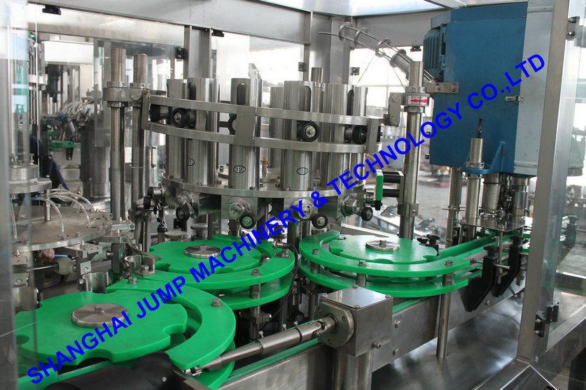 Tropical Fruits Processing Line/Fruit Juice Production Line