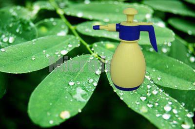 Pressure Sprayer with CE Approve (DF-7002(2L) (DF-7002)