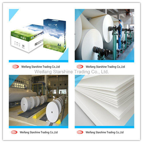 Hot Sale A4 Copy Paper for Office Printing