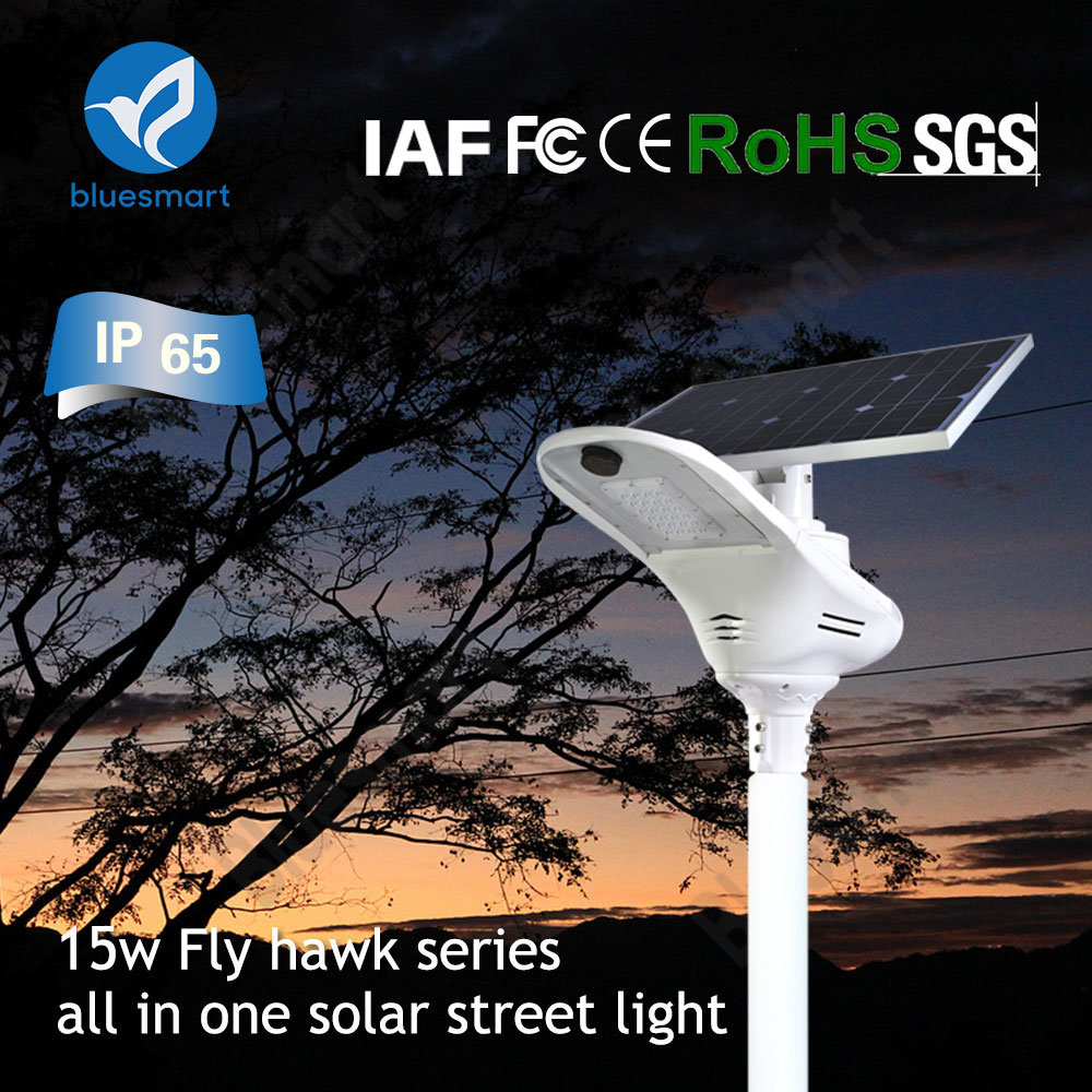 Bluesmart Solar Power Street Light Project with Smart Lighting System