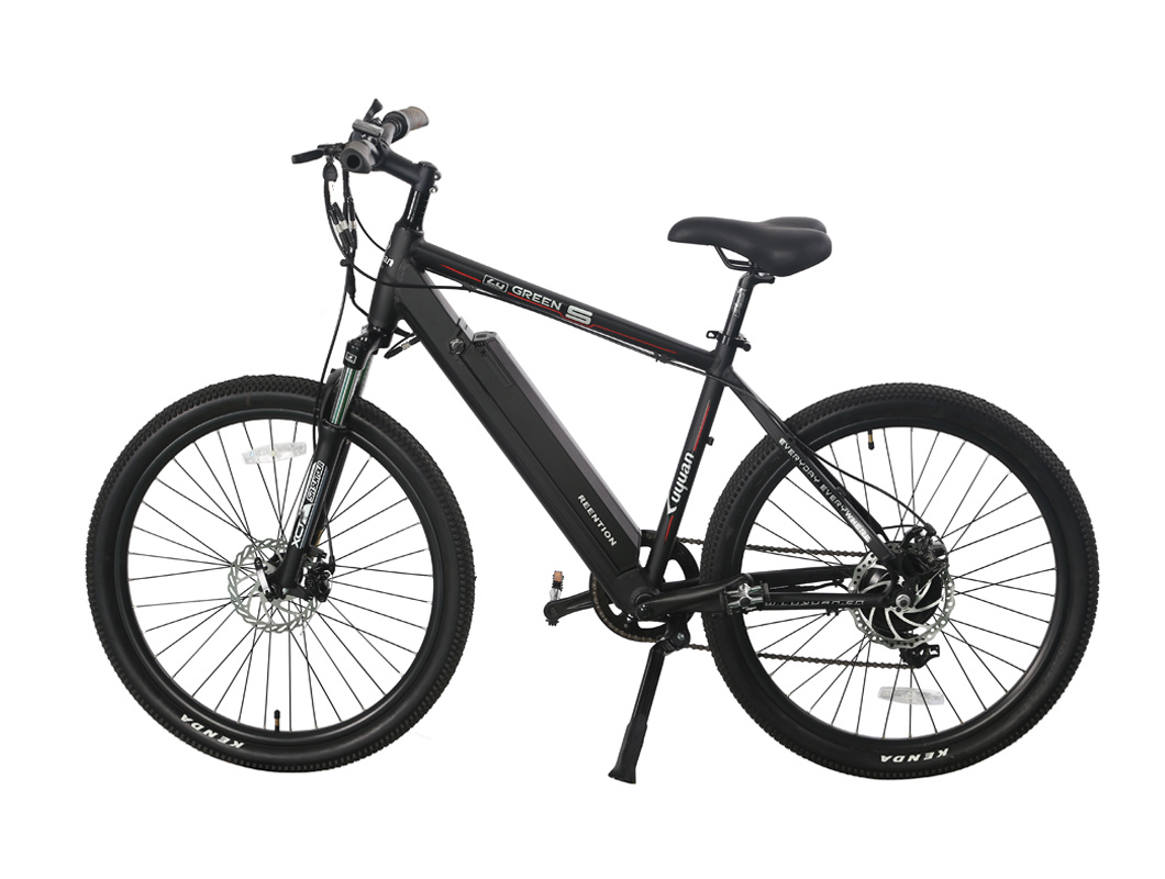 CE Pas (throttle optional) Frame Hidden Portable Battery Electric Bicycle (PB111)