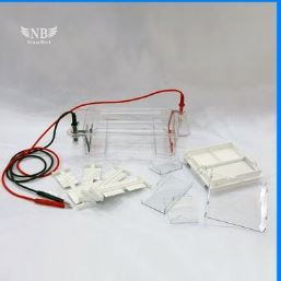 Dycp-38c Electrophoresis Cell