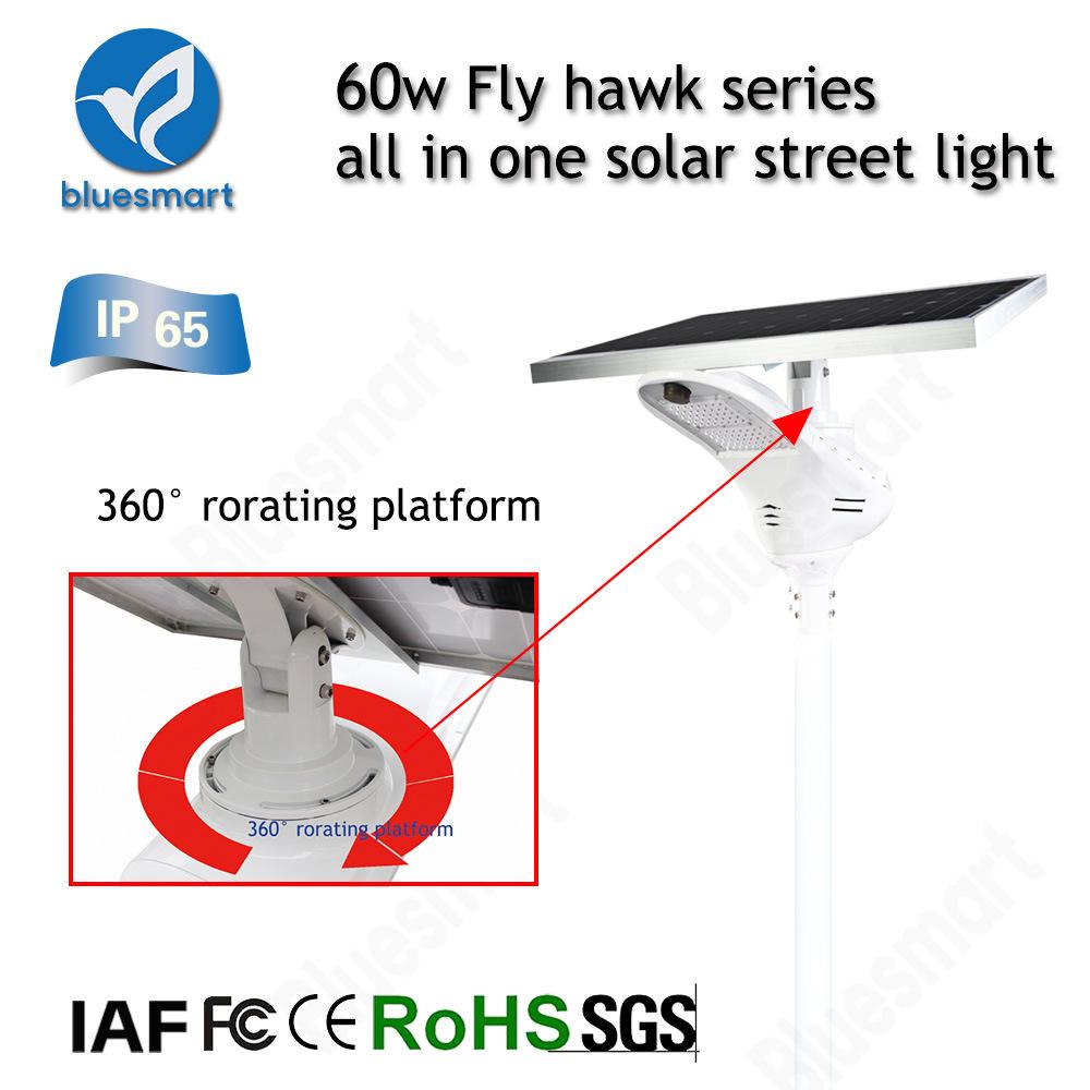 Bluesmart Solar Power Street Light Project with Smart Lighting System