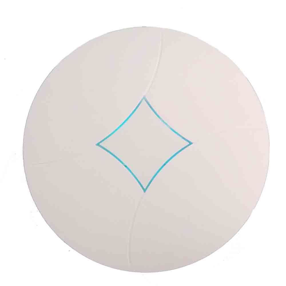 Openwrt 2.4/5.8GHz Dualband Ceiling Wireless Access Point Max up to 750Mbps (603AC)