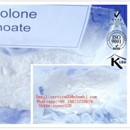 Durabolin/Deca/Nandrolone Deca/Nandrolone Decanoate for Body Building Deca Durabolin