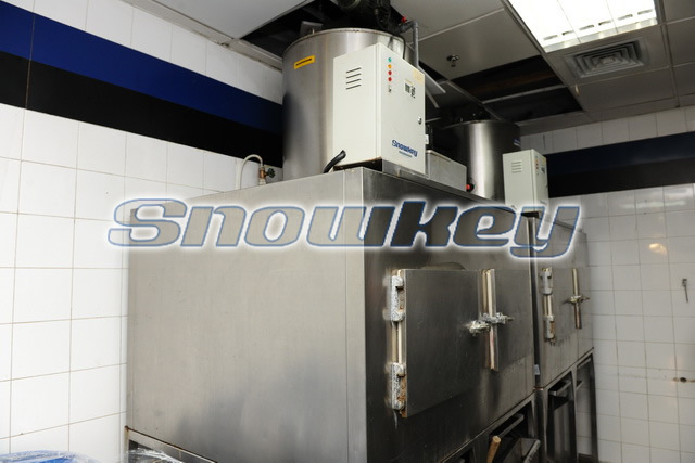 Used Ice Flake Machines for Sale