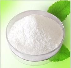 Factory Supply Sophora Flavescens Extract