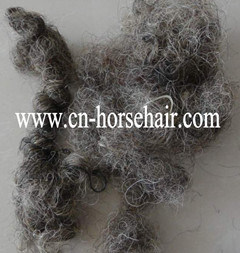 China Curled Horse Hair for Mattress China Curled Horse