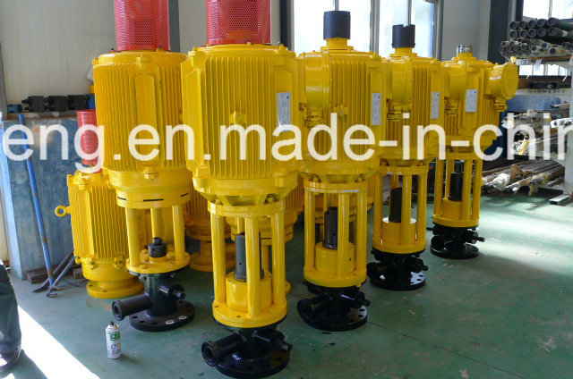 Downhole Screw Pump Well Pump Direct Ground Driving Device 22kw